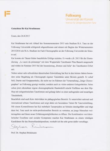 Gutachten Stephan Brinkman1